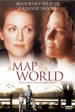 Map of the World, A