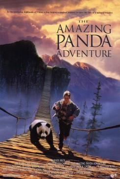 Amazing Panda Adventure, The
