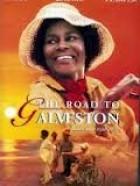 Road to Galveston, The