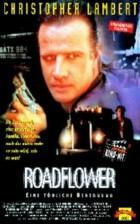 Roadflower