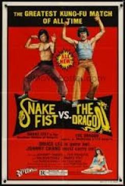 Snakefist vs The Dragon, The